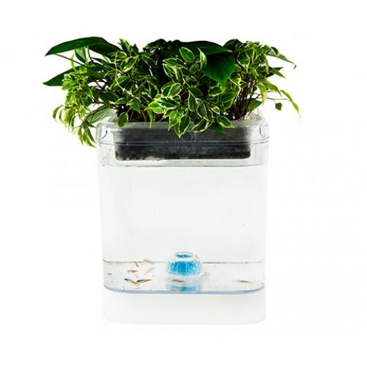 Kit Decorativ Acvariu Pesti cu Iluminare LED si Suport Flori CR 7931 - HotPick